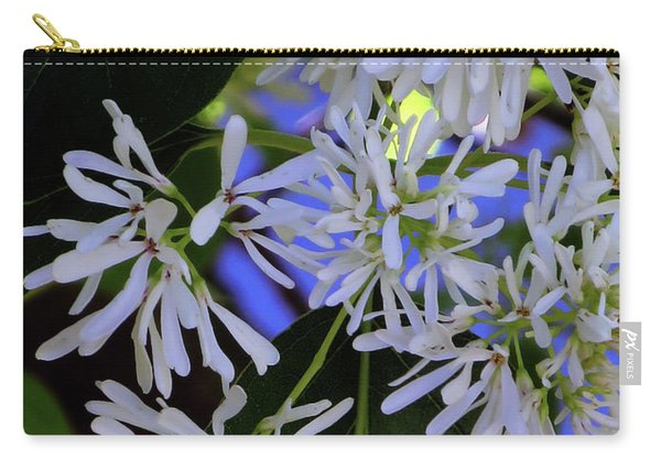 Carly's Tree - The Delicate Grow Strong Carry-all Pouch