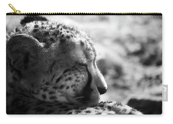 Carry-all Pouch featuring the photograph Catnap by Whitney Goodey