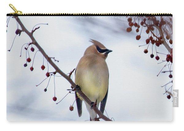 Cedar Waxwing  Carry-all Pouch