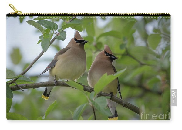 Cedar Waxwings Carry-all Pouch