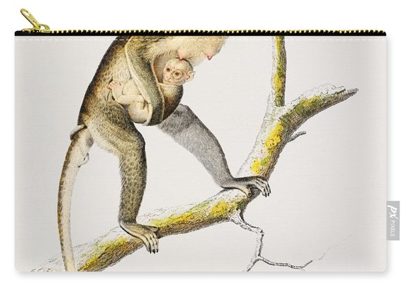 Cercopithecus Griseus  Guenon Grivet  Illustrated By Charles Dessalines D' Orbigny  1806-1876  Carry-all Pouch