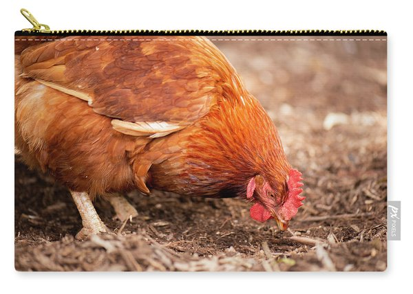Carry-all Pouch featuring the photograph Chicken On The Farm by Rob D Imagery