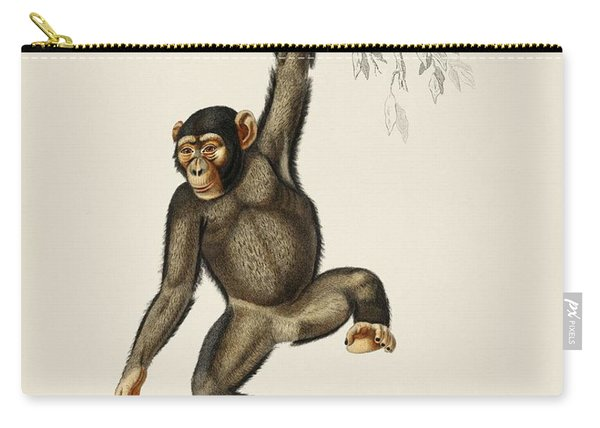 Chimpangze  Troglodyte Chimpanze Illustrated By Charles Dessalines D' Orbigny  1806-1876  Carry-all Pouch