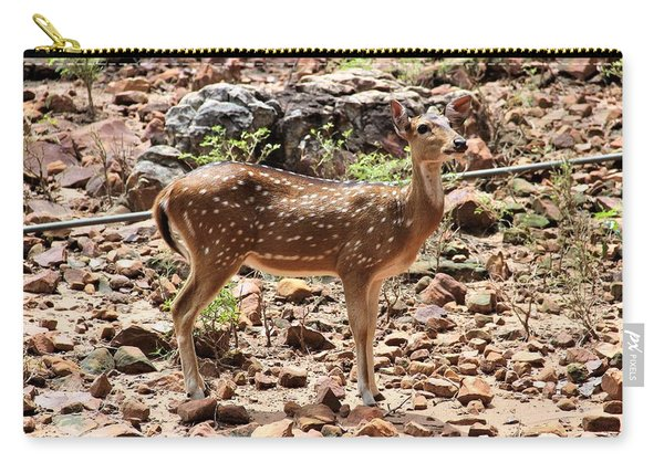 Chital Deer In Nagarahole, India Carry-all Pouch