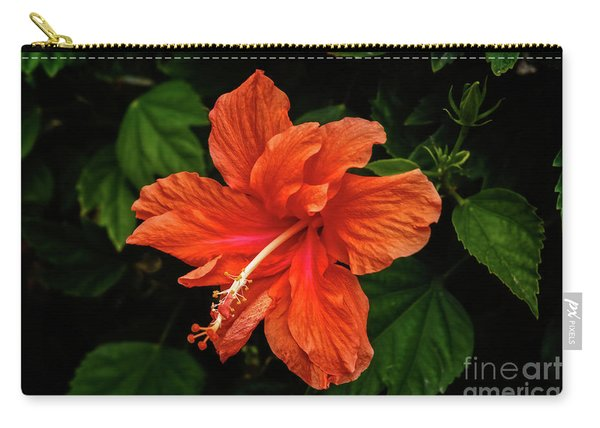 Close Up Hibiscus Carry-all Pouch