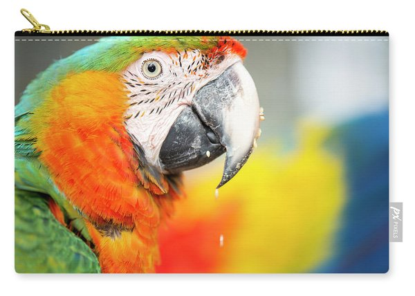 Close Up Of The Macaw Bird. Carry-all Pouch