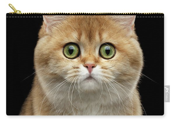 Close-up Portrait Of Golden British Cat With Green Eyes Carry-all Pouch
