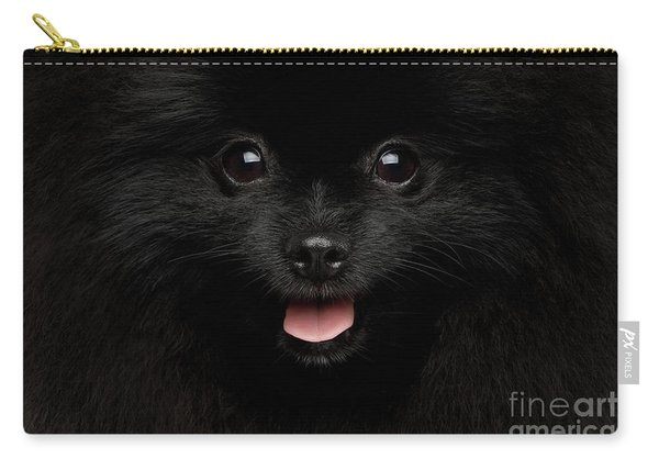 Carry-all Pouch featuring the photograph Close-up Portrait Of Happy Pomeranian Spitz Dog by Sergey Taran