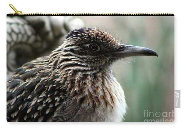 Closeup Of Road Runner By Dragon In Palm Desert Carry-all Pouch