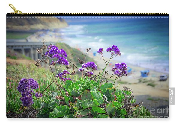 Coastline Color Carry-all Pouch
