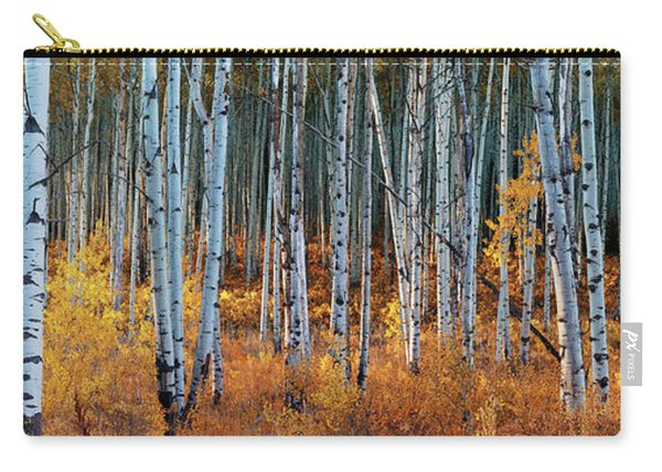 Colorado Autumn Wonder Panorama Carry-all Pouch