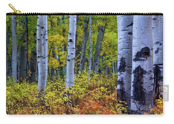 Carry-all Pouch featuring the photograph Colors Of October by John De Bord