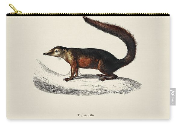 Common Treeshrew  Tupaia Glis Illustrated By Charles Dessalines D' Orbigny  1806-1876  Carry-all Pouch