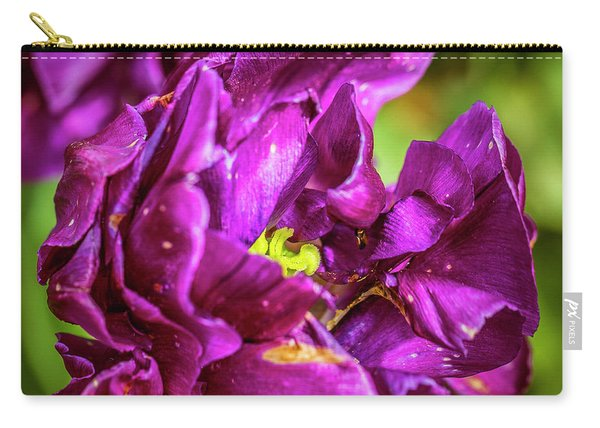 Contrasting View Carry-all Pouch