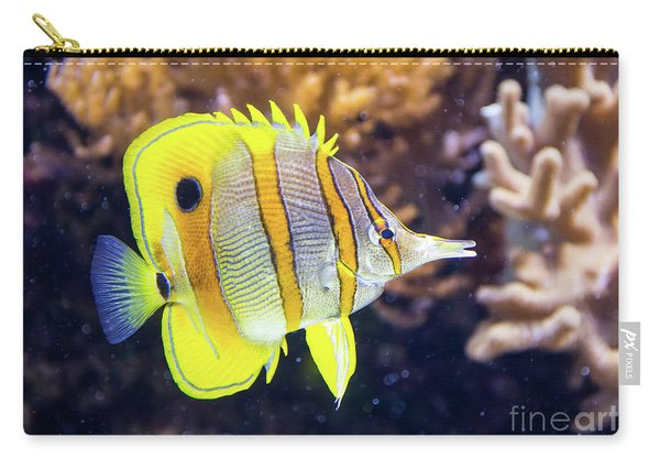 Copperband Butterfly Fish Carry-all Pouch