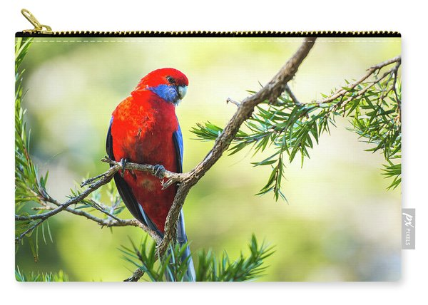 Crimson Rosella Carry-all Pouch