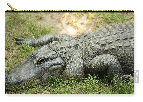 Carry-all Pouch featuring the photograph Crocodile Outside by Rob D Imagery