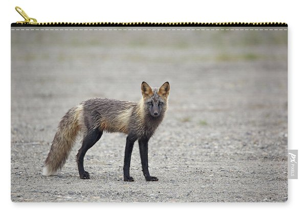 Carry-all Pouch featuring the photograph Cross Fox In Alaska by Jean Clark