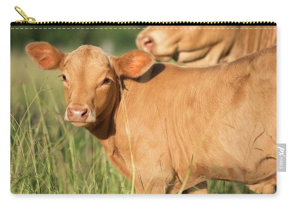 Carry-all Pouch featuring the photograph Cute Calf by Rob D Imagery