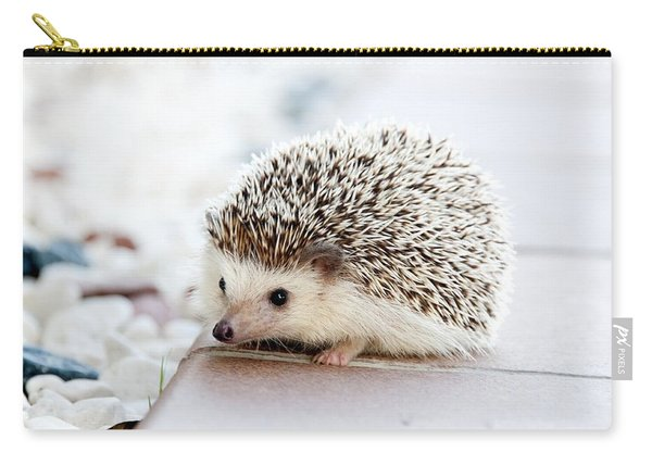 Cute Hedgeog Carry-all Pouch