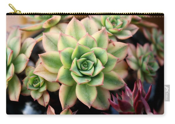 Cute Succulent Carry-all Pouch