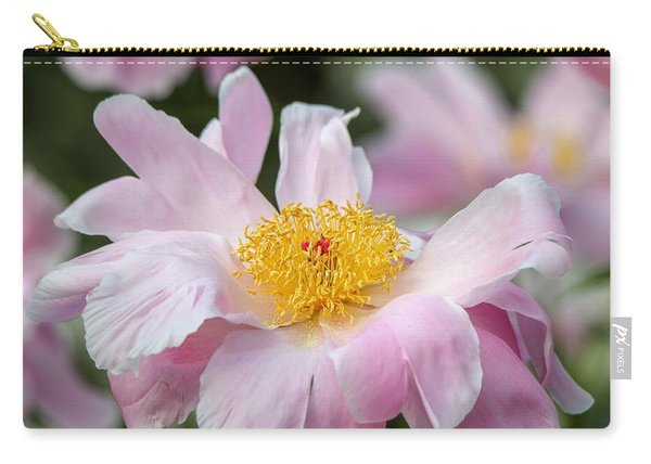 Delicate Pink Peony Carry-all Pouch