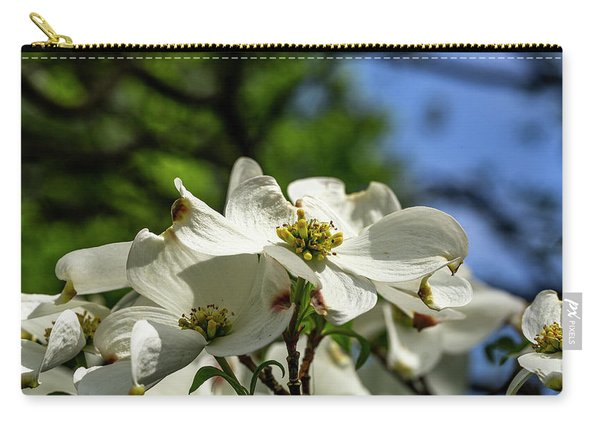 Dogwood Day Afternoon Carry-all Pouch