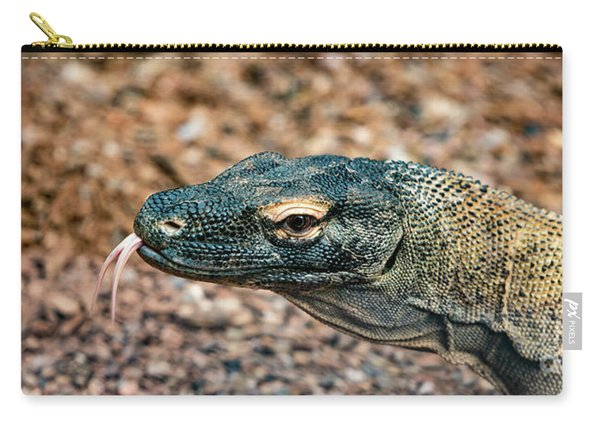 Carry-all Pouch featuring the photograph Dragon With No Fire by Dheeraj Mutha