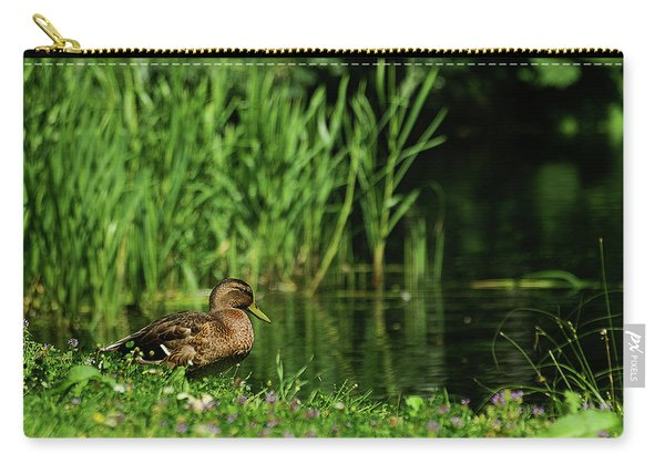 Dreaming Duck Carry-all Pouch