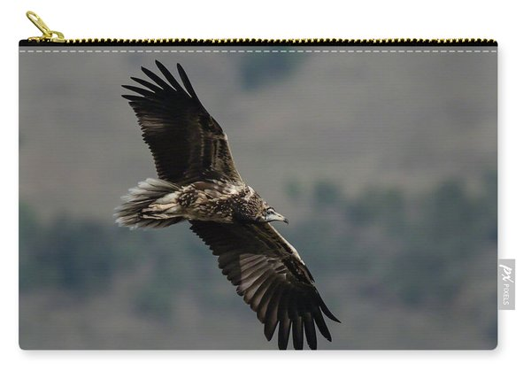 Egyptian Vulture, Sub-adult Carry-all Pouch