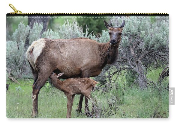 Carry-all Pouch featuring the photograph Elk Cow And Calf In Yellowstone by Jean Clark