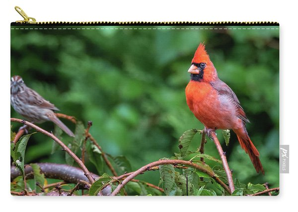 Envy - Northern Cardinal Regal Carry-all Pouch