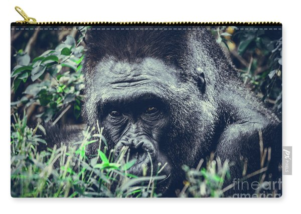 Carry-all Pouch featuring the photograph Eyes Speak by Dheeraj Mutha