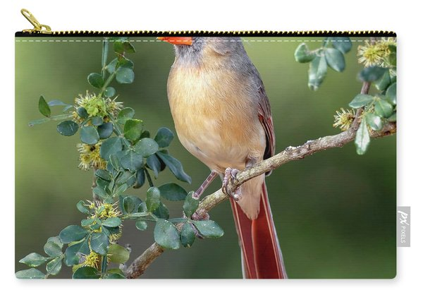 Fabulous Female Cardinal Carry-all Pouch