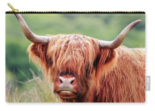 Face-to-face With A Highland Cow Carry-all Pouch