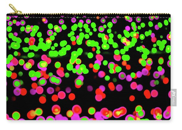 Fairy Lights 1 Carry-all Pouch
