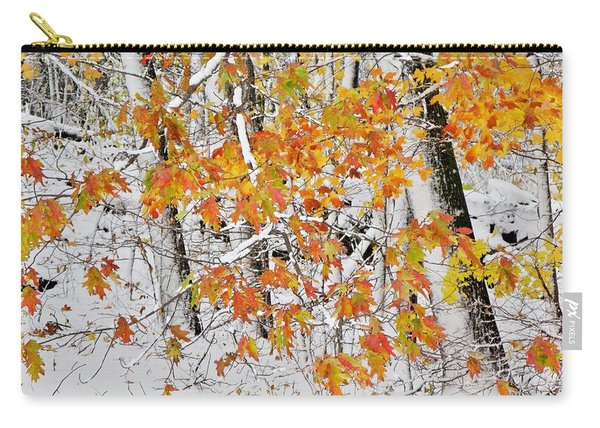 Fall And Snow Carry-all Pouch