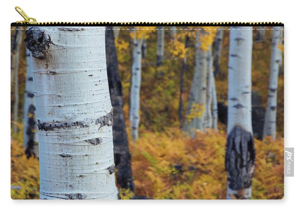 Carry-all Pouch featuring the photograph Fall Aspen Forest by John De Bord