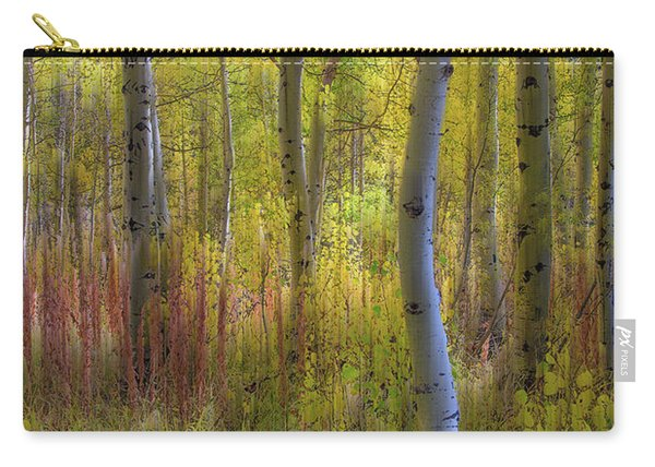 Fall Color Abstracts Carry-all Pouch