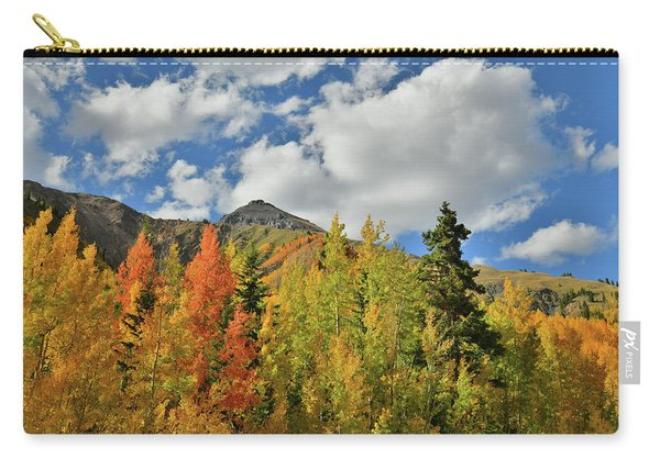 Fall Colored Aspens Bask In Sun At Red Mountain Pass Carry-all Pouch