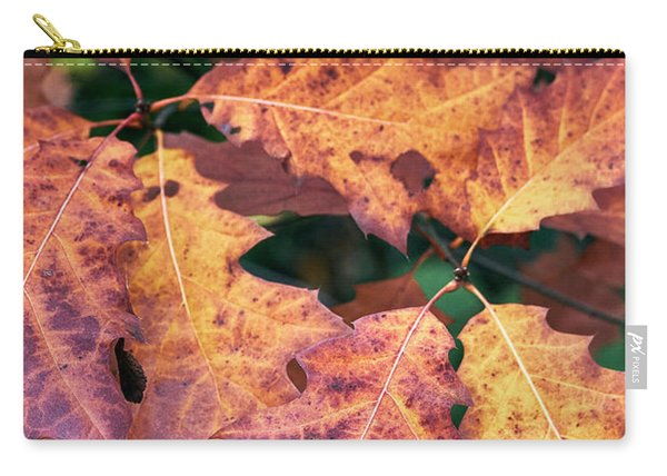 Carry-all Pouch featuring the photograph Fall Flames by Whitney Goodey