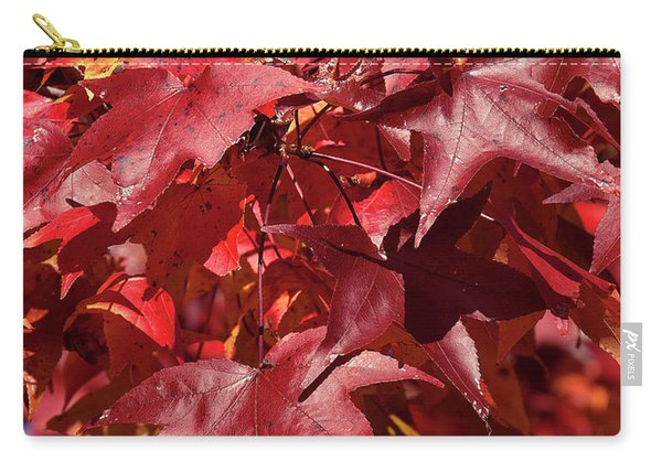 Fall Sweetgum Leaves Df005 Carry-all Pouch