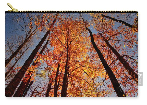 Fall Trees Sky Carry-all Pouch