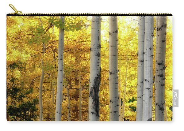 Fall's Visitation Carry-all Pouch
