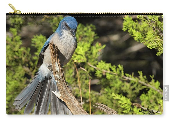 Fanning Scrub Jay Carry-all Pouch