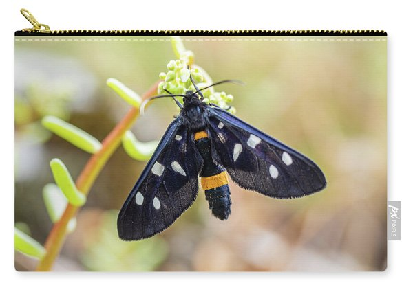 Fegea - Amata Phegea -black Insect With White Spots And Yellow Details Carry-all Pouch