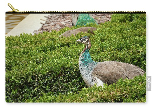Female Peafowl At The Gardens Of Cecilio Rodriguez In Madrid, Spain Carry-all Pouch