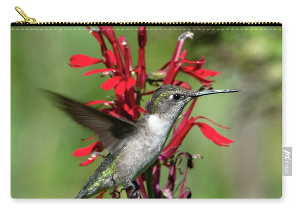 Female Ruby-throated Hummingbird Dsb0325 Carry-all Pouch