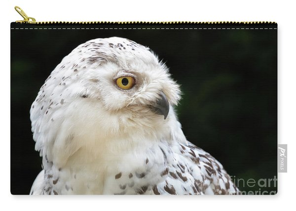 Female Snowy Owl Close Up Carry-all Pouch