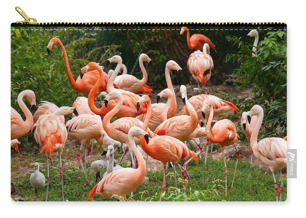Flamingos Outdoors Carry-all Pouch